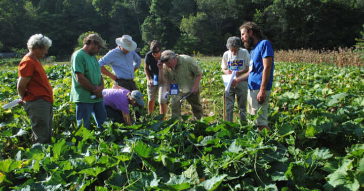 Photo of Common Wealth Seed Growers in the field