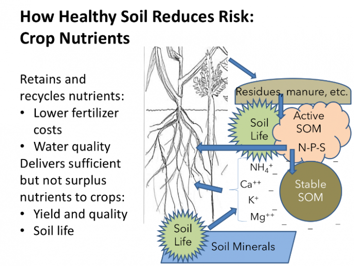 Graphic of how healthy soil reduces risks: crop nutrients