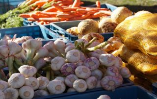 Vegetables in bins