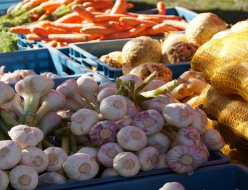 Recent Report Recommends Organic Policy Improvements